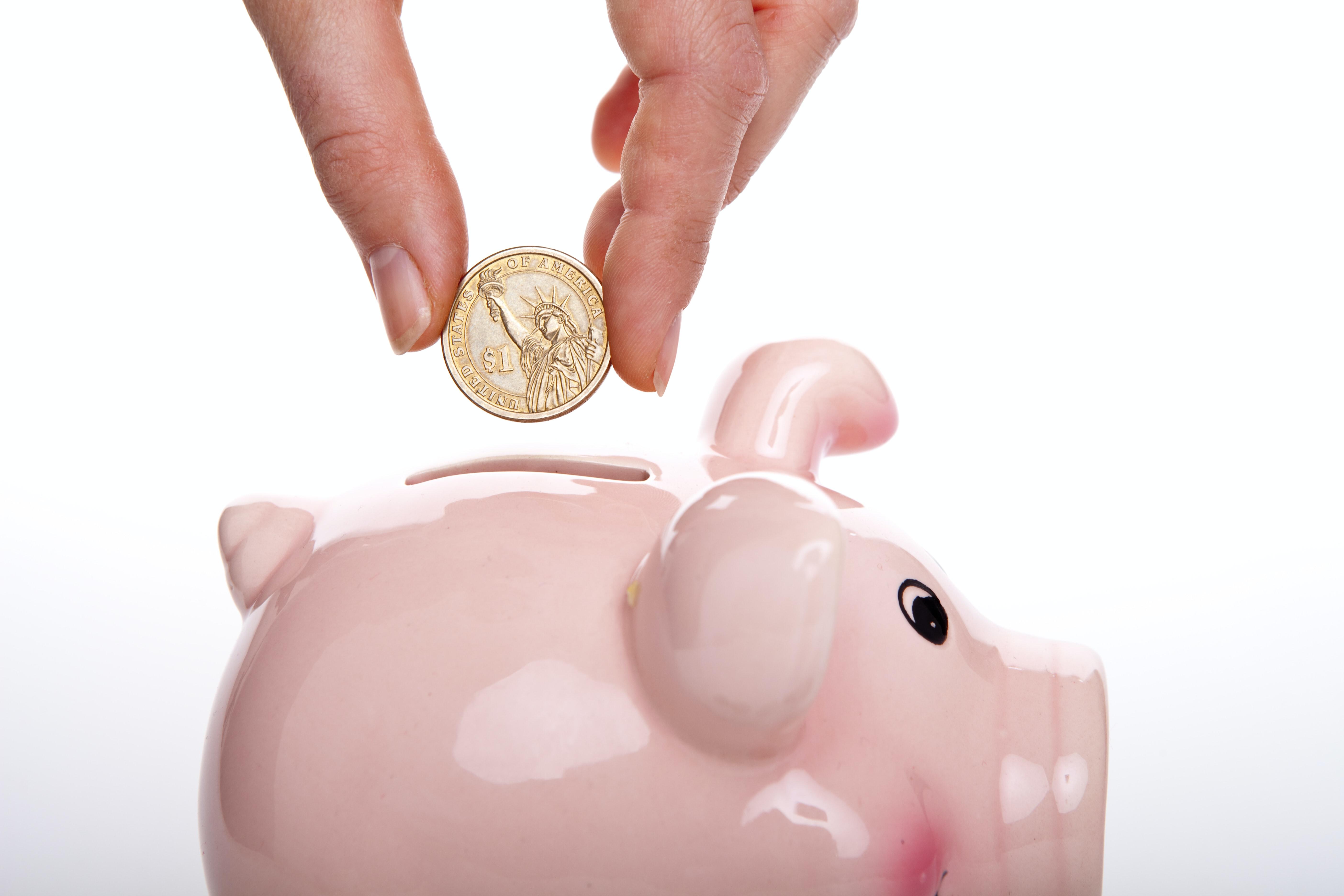 saving money in a piggy bank fiscal